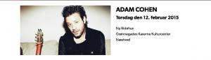Koncert med Adam Cohen