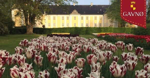 Tulipanfestival på Gavnø Slot - 60 år