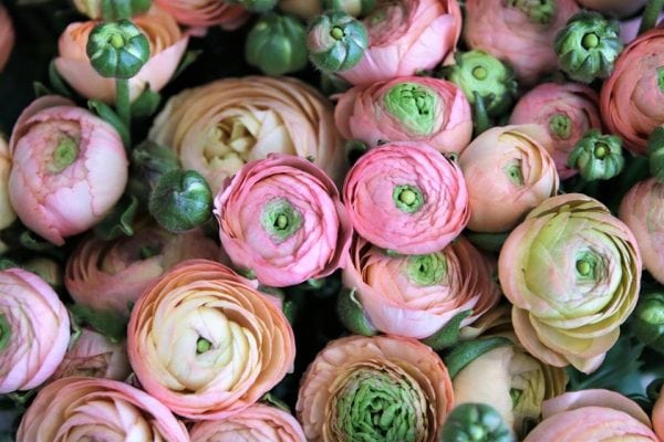 Lokal blomsterhandler følger drømmen og åbner ny butik