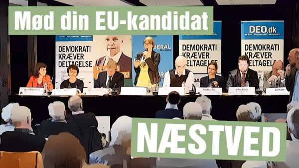 EU-valgmøde med kandidater i Næstved