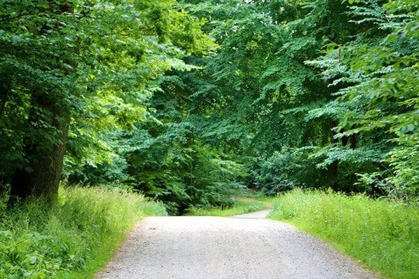 Klostervandring - en meditativ aftentur med Henning Marcher og Karen Marie Bøggild